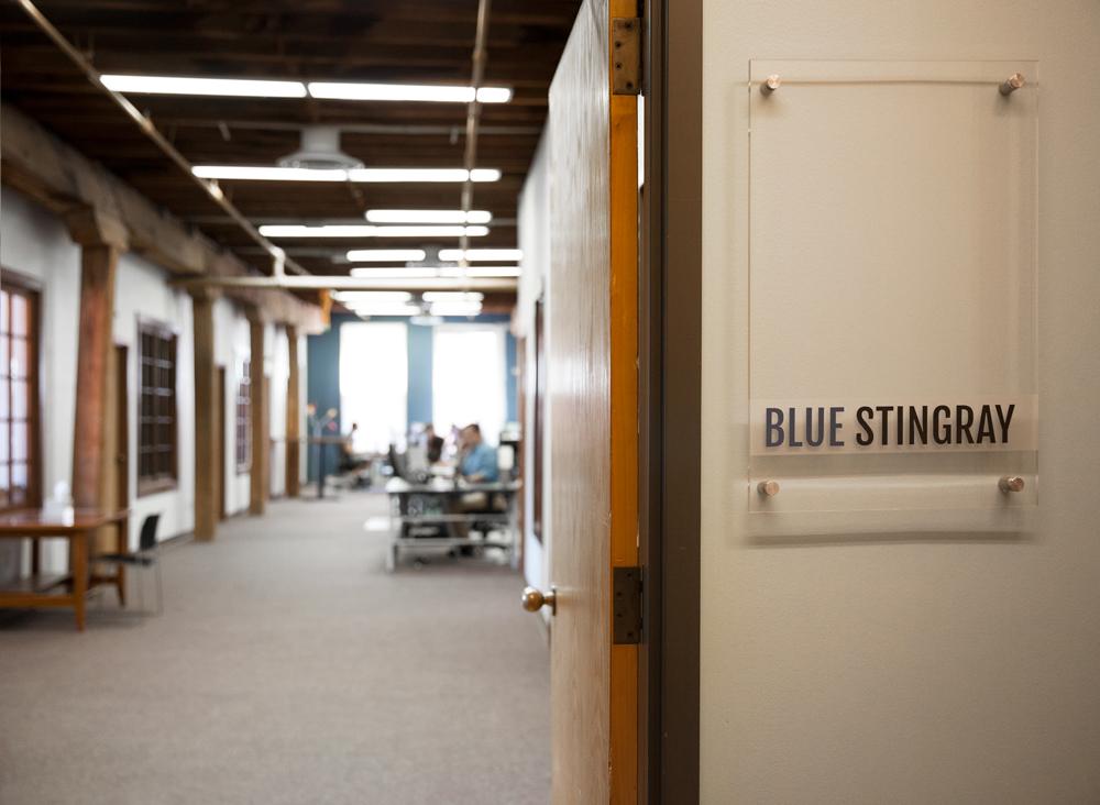 Blue Stingray Office