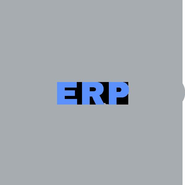 Choosing an ERP